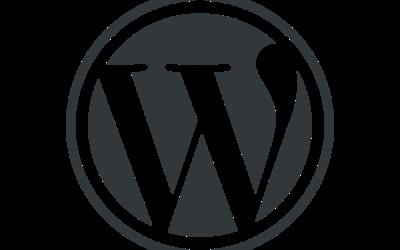 WordPress – Das CMS!